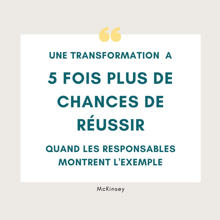 transformation analytique : citation McKinsey